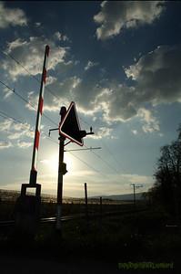 Vufflens RXCrossing Sunset_03