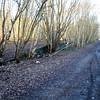 A view of the former old station at Partington and trackbed / line ahead on the outskirts of Manchester. 16/02/13.