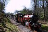 River Mite with a lengthy train powers up through Horsefalls Wood, 11/04/09.