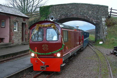 Douglas Ferreira, decorated with tinsel, at Irton Road, 09/12/06.