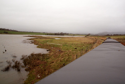 High water levels on Barrow Marsh. 26/12/11.