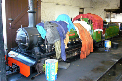 River Irt wrapped up in blankets in the shed, 17/02/07.