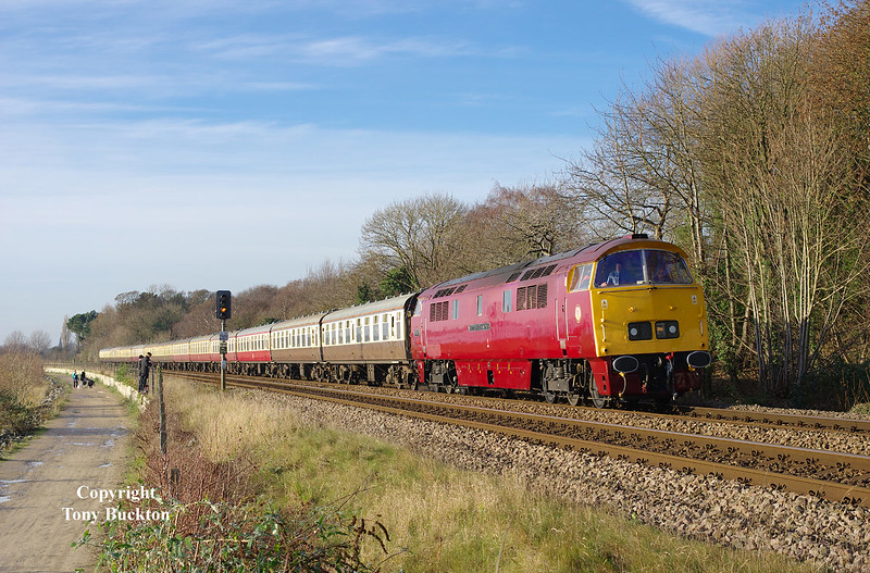 D1015 Western Champion runs along Hessle Foreshore at 12:46 on Saturday 17th December 2016 with Pathfinder Tours' Yuletide East Yorkshireman  railtour running as 1Z17 05:42 Swindon to Scarborough.