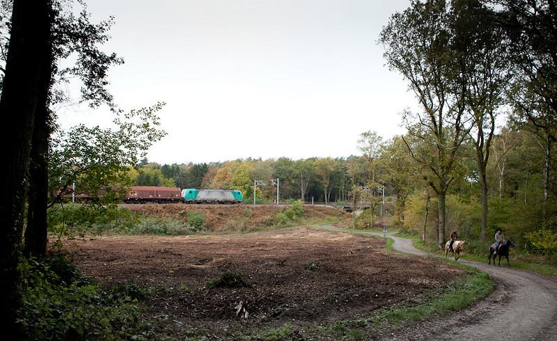 23-Oct-2010