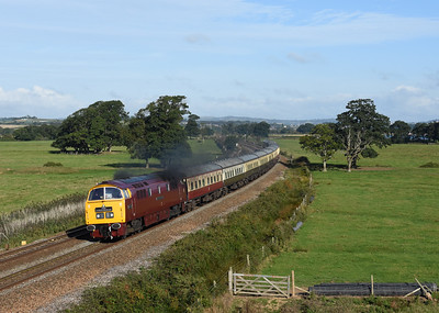 Running as D1071 - D1015 passes Powderham on 17/09/16 with 1Z59 0507 Tame Bridge Parkway to Penzance, a rare opportunity to get the estuary side, and in sun... 21 people thought so too!