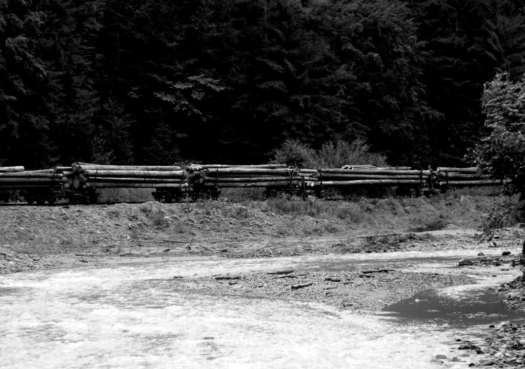 Heading slowly back down the valley with the timber and various other bits and pieces. Not visible on this shot but some of the men ride the wagon bogies (acting as brakemen) all the way back to Viseu de Sus