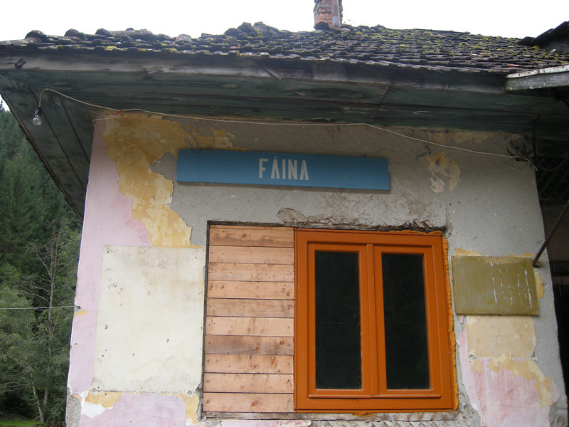 Faina station - wasn't really clear what the plan was as my guardian on the trip (the train driver) didn't speak English (and why should he!). Was concerned that we could be spending hours up here while logs were loaded. It was cold and there was not a whole lot to do other than venture into the rather forbidding forests on identical tracks for non-existent views. But we headed up a bit further up the line before spending an hour or so picking up timber that was waiting for us