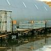 Four No No. 3 Plank Flatbeds - Scapa Flow Visitor Centre  Jude Callister