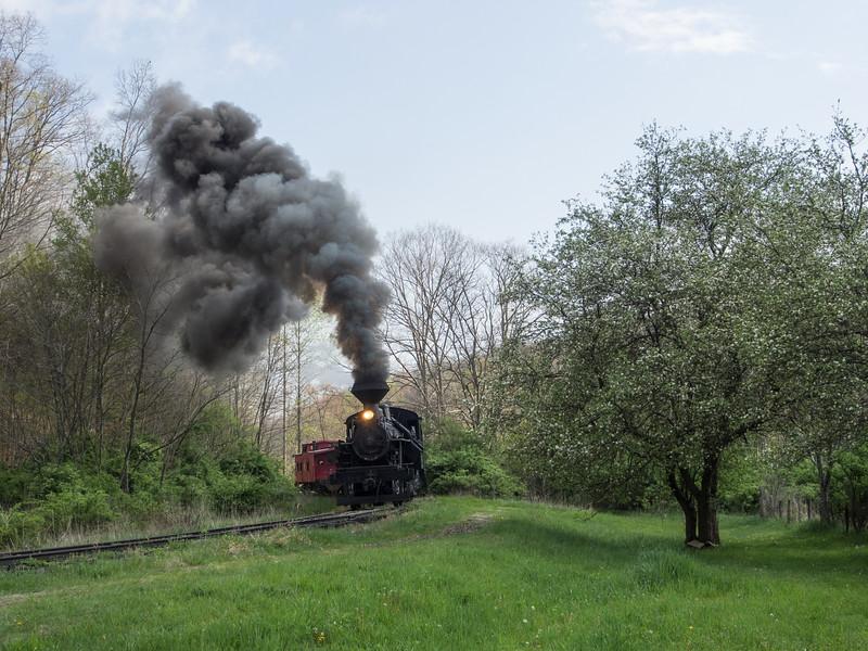 Heisler in Spring
