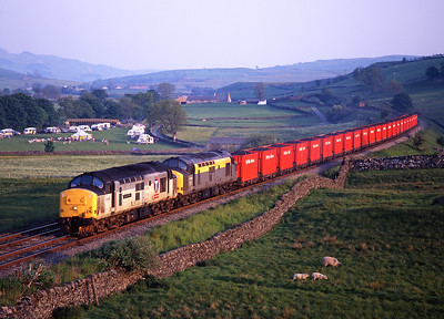 37407 + 37255 shatter the peace at Horton in Ribblesdale with the Saturday evening British Fuels coal train, 15/6/96.