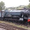4920 Dumbleton Hall - South Devon Railway - 31 August 2017