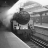 "On Sunday 13th November 1966 BR Standard 5MT 73065 is seen at Victoria with 'The West Country Special"". The convoluted route would be via Herne Hill, Tulse Hill, Reading and the ex GWR main line to Exeter."