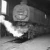 Guildford shed was bunked on 31/10/64 and 0-6-0 33015 was caught resting between duties - being withdrawn the following month.