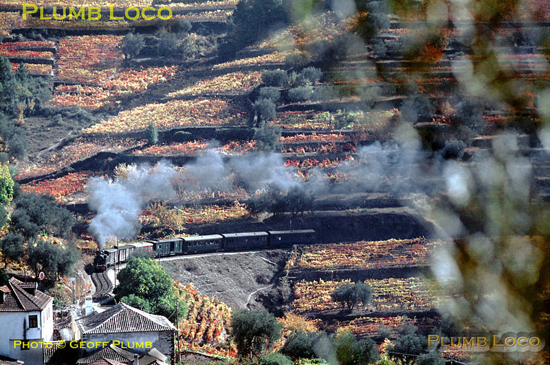 The vines on the terraces have taken on their autumnal hues as CP metre-gauge Mallet 2-4-6-0T No. E207 rounds the curve towards Carrazedo station with a train from Régua to Vila Real. Once it restarts its train from the station, it will climb round the loops here until it passes the point where I am standing. Thursday 5th November 1970. Slide No. 5811.
