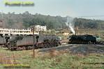 Shed scene, Alsasua, 1st November 1969