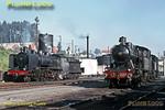 CP Nos. 293 & 088, Contumil Depot, 4th November 1969