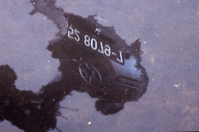 It's hard to read when reflected in the pool of water, but this is the number plate for 52 8079-7.