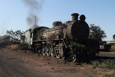 Abandoned at Hwange colliery, this locomotive has become part of the garden.