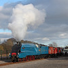 Bitten at the<br /> 'The Great Gathering'<br /> Shildon <br /> 16/2/2014