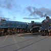 'The Great Gathering'<br /> Shildon <br /> 16/2/2014