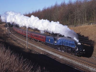 """60007 """"Sir Nigel Gresley"""" passes Beckfoot 8/3/97."""