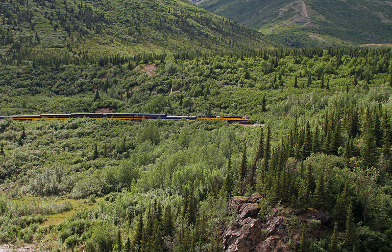 An Alaska Railroad passenger train is about to enter the narrow confines of Healy Canyon.