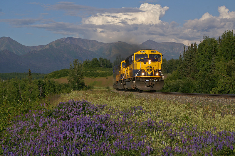 The southbound passenger train from Fairbanks, AK rolls throughFort Richardson on a beautiful Alaska summer day. When the sun shines Alaska is hard to beat for beauty. In a few minutes the passengers will disembark in Anchorage the largest city in Alaska.