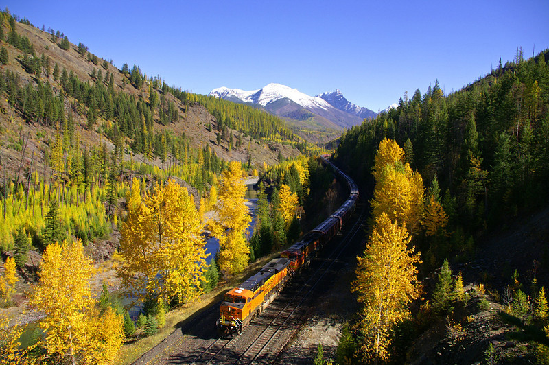 The fall season on Marias Pass has incredible color to offer the photographer.