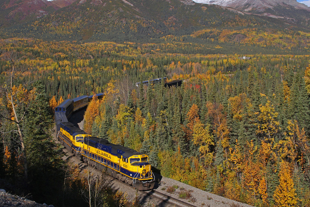 A sweeping curve as the southbound Denali Star departs Denali Park, AK headed for Anchorage on a fine fall day.