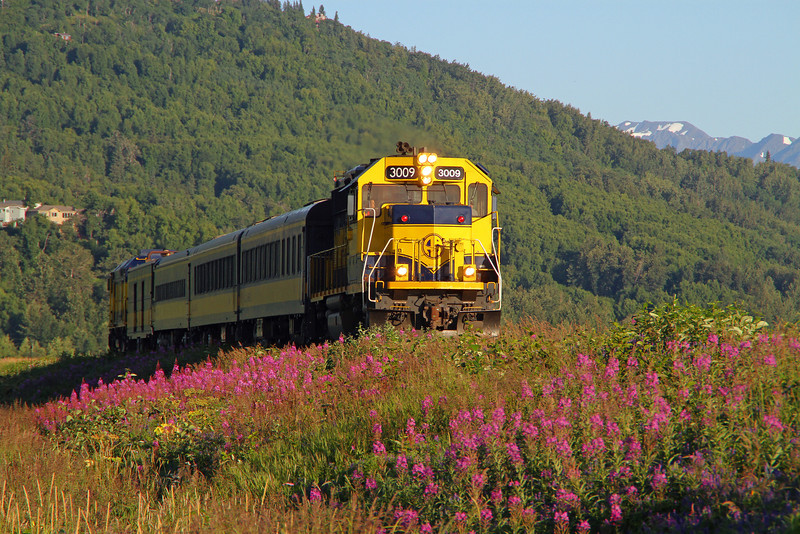 Alaska Railroad's Glacier Discovery returns to Anchorage on a beautiful summer evening.