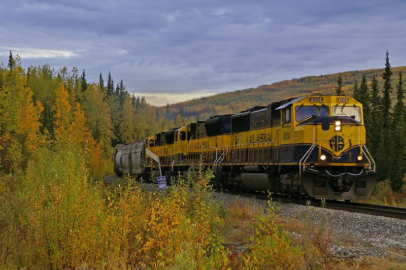 Alaska freight train rolls through the fall colors at Happy, Alaska.