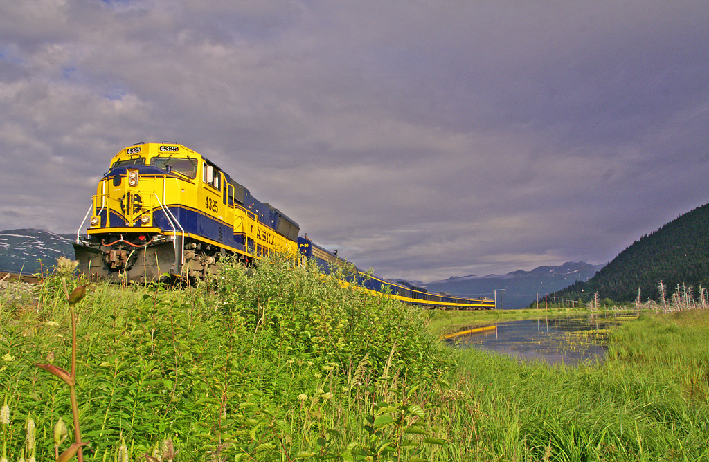 Alaska Railroad's Coastal Classic rolls by a salt water bog near Portage, Alaska.