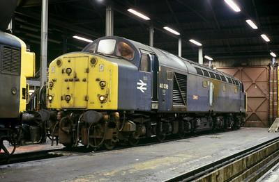 Class 40 No 40035 in Healey Mills