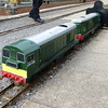 D8166 & D8142 Strawberry Line Minature Railway  27 09 17