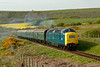 "55022""Royal Scots Grey""passing Corfe Common working 2H23 1710 Norden ~ Swanage 1733 10/05/09"