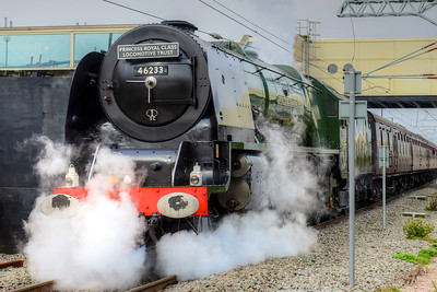 The Duchess of Sutherland