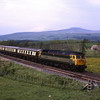 47851 with 47826 on the rear rumble passed Kettles Beck with empty stock from Steamtown to Ferme Park 27/5/2005.
