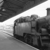 The only loco operated service out of Exmouth is seen here on 11/07/64 with Exmouth Junction allocated BR 3MT 82042.The train was the 13 34 Summer Saturday departure for Waterloo which, at Sidmouth Junction, would to attached to a West of England to Waterloo service.She was withdrawn from Gloucester 1 year later - the line via Budleigh Salterton surviving until March 1967.