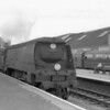 Exmouth Junction allocated unmodified light pacific 34080 74 Squadron is seen passing through Exeter St Davids on 11/07/6464 with the Surbiton to Okehampton car carrier service - being withdrawn in the September cull that year.