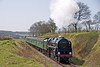 9F 92212 in action on the Mid Hants railway, as she takes the climb to Medstead with ease 17 April 2010.