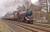"46201 ""Princess Elizabeth"" storms past the foot crossing at Blackwater heading for Bristol 25/03/2010."