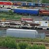 DRK81623 - Toton - 4 June 2011