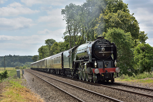 Trains June 2017