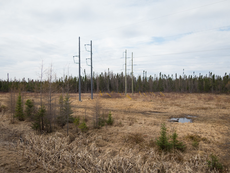 Transmission lines along the route of the Polar Bear Express