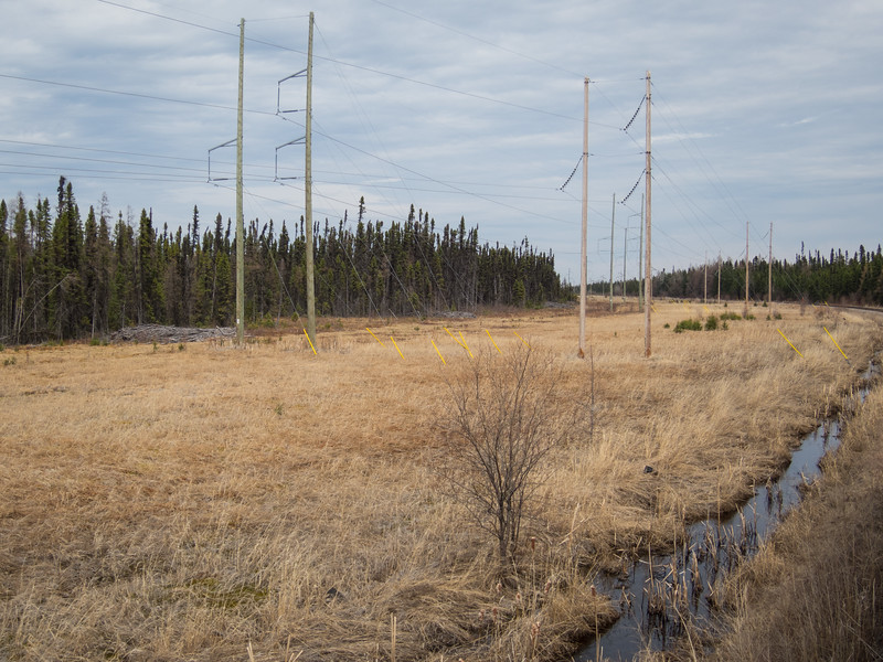 Tracks and hydro lins curving just north of Moose River bridge
