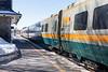 VIA train 64 in Belleville Ontario station.
