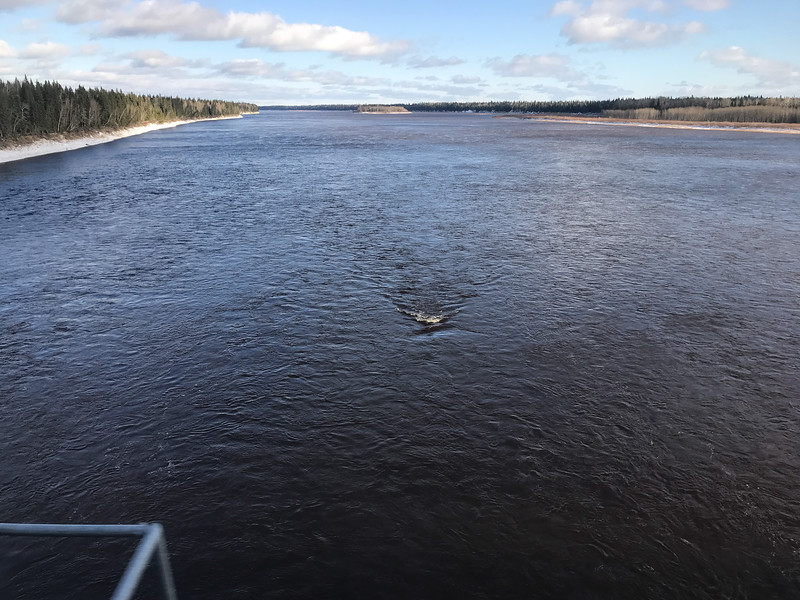 Crossing the Moose River on the train, mostly open water 2017 November 6