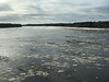 Ice floating on the Moose River at Moose River Crossing 2017 November 10th.