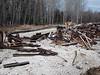 Materials from bridge repairs in Moose River Crossing