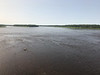 The Moose River at Moose River Crossing 2017 August 24th